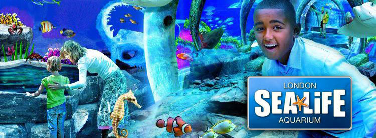 Sea Life London Aquarium Iconic Attraction In Southbank London