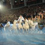 londo olympia horse show