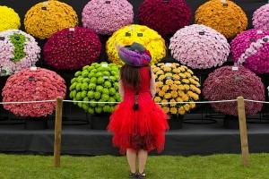 RHS Chelsea flower show-London